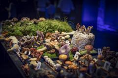 chefdays-de-2019-tag-1-254