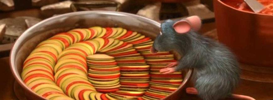 9-Ratatouille