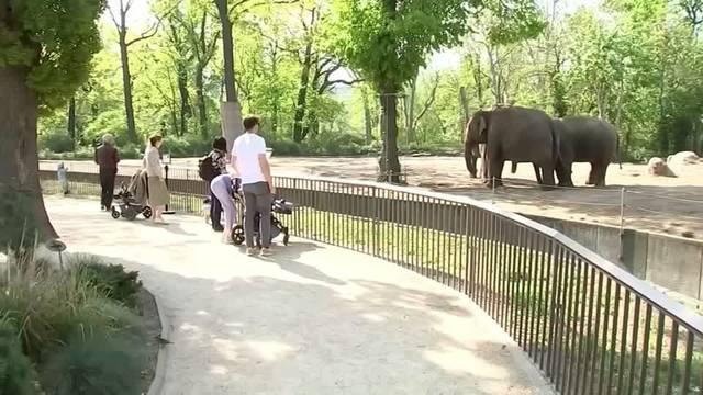 zoo-tierpark